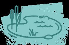 Teichwirschaft mit Regenerativen Mikroorganismen