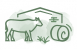 Viehwirtschaft mit Regenerativen Mikroorganismen